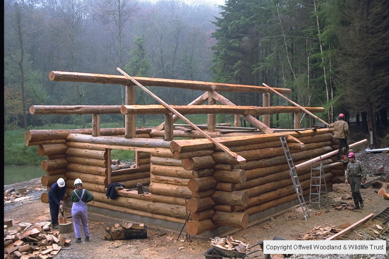 Construction of the Log Cabin