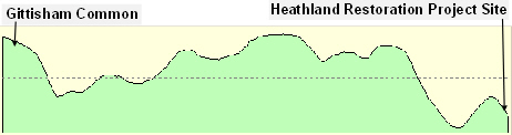 Elevation profile of the land between Gittisham Common and the Heathland Restoration Project site.